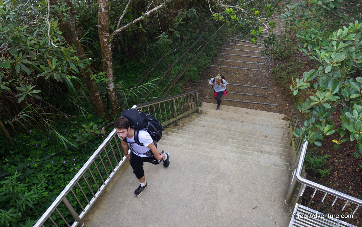 These two had just arrived at the starting/ending point from the summit of Mt. Kinabalu